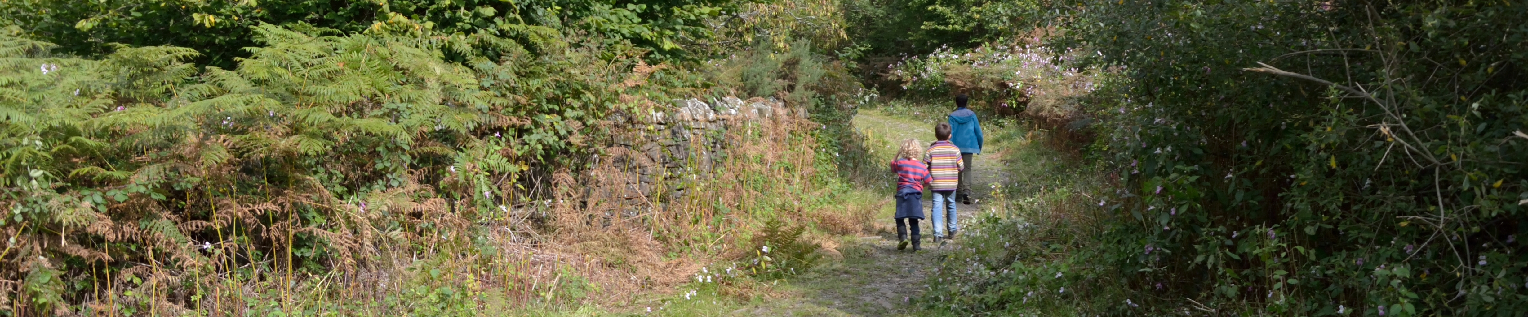 Children on the lane above Llangynwyd
